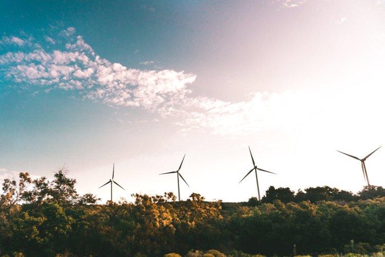 Hoe duurzaam beleggen?